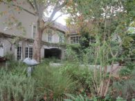 Beautiful Well Established Garden With Large Trees in Somerset West